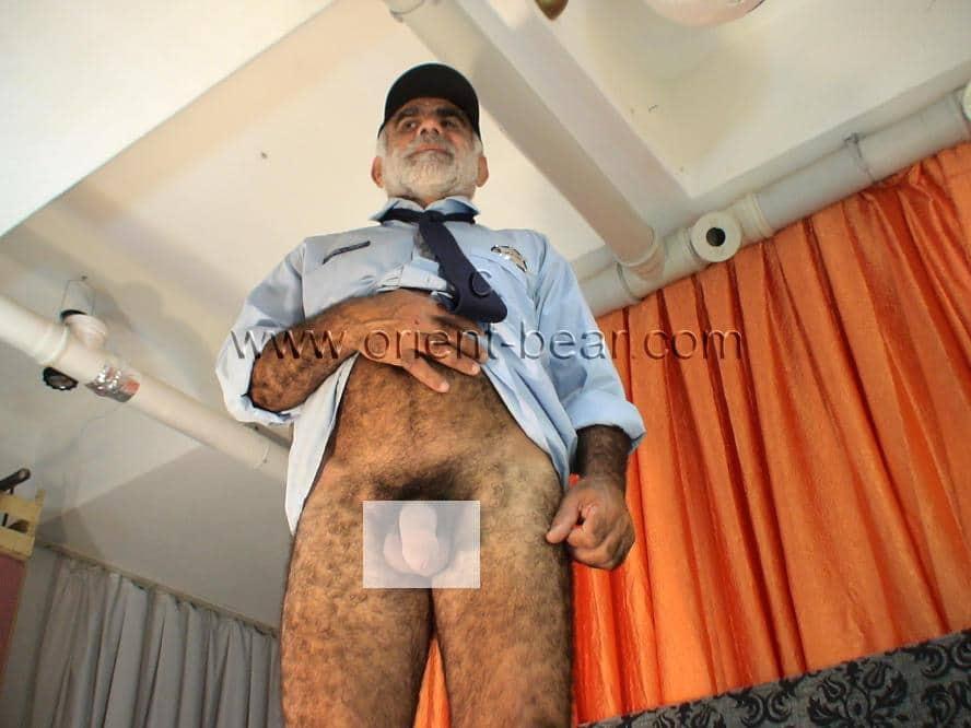 Turkish Silver Daddy