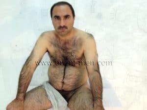 hairy turkish Bear