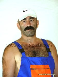 Hairy Turkish Bear