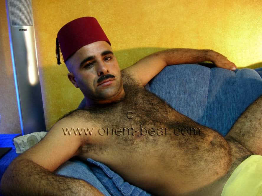 Turkish Furry Body