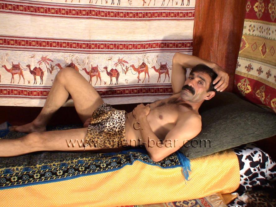 %naked hairy turk%