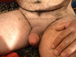 his clean shaved bush a furry turkish bear
