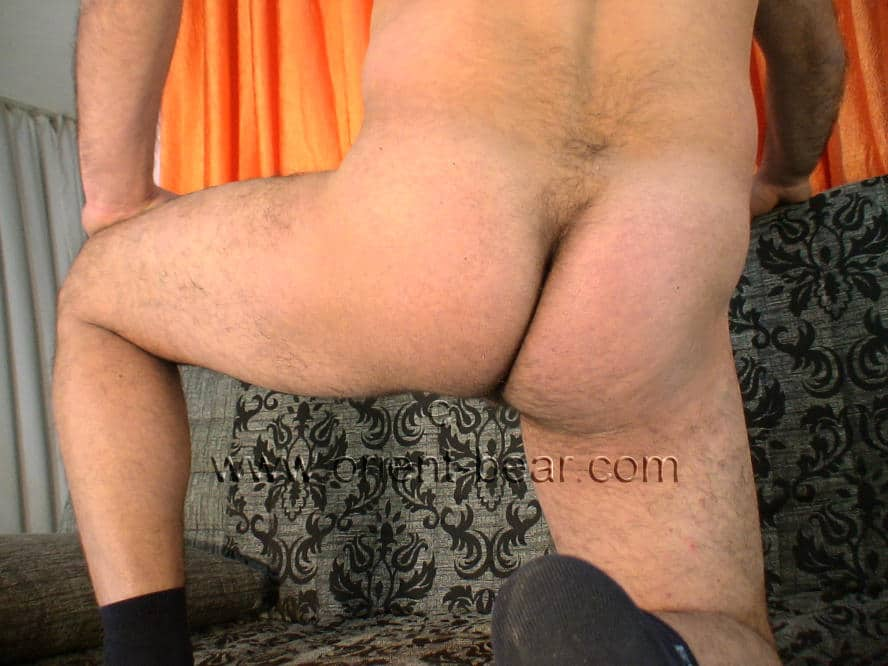 he also shows his firm butt with the plump ass cheeks. naked haired turkish bear